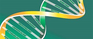 Cadena de ADN que contiene algunos de los valores del Grupo Social ONCE