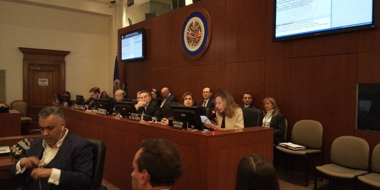 Patricia Sanz ante el Consejo Permanente de la OEA