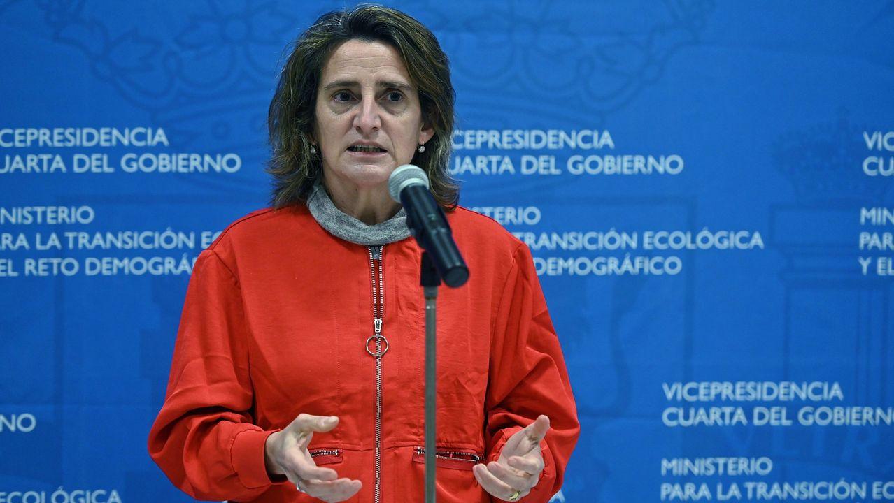 Ministra de Transición Ecológica, Teresa Ribera