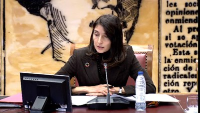 Intervención presidenta del Senado en la reunión