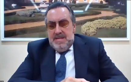 Miguel Carballeda durante su intervención en la reunión telemática