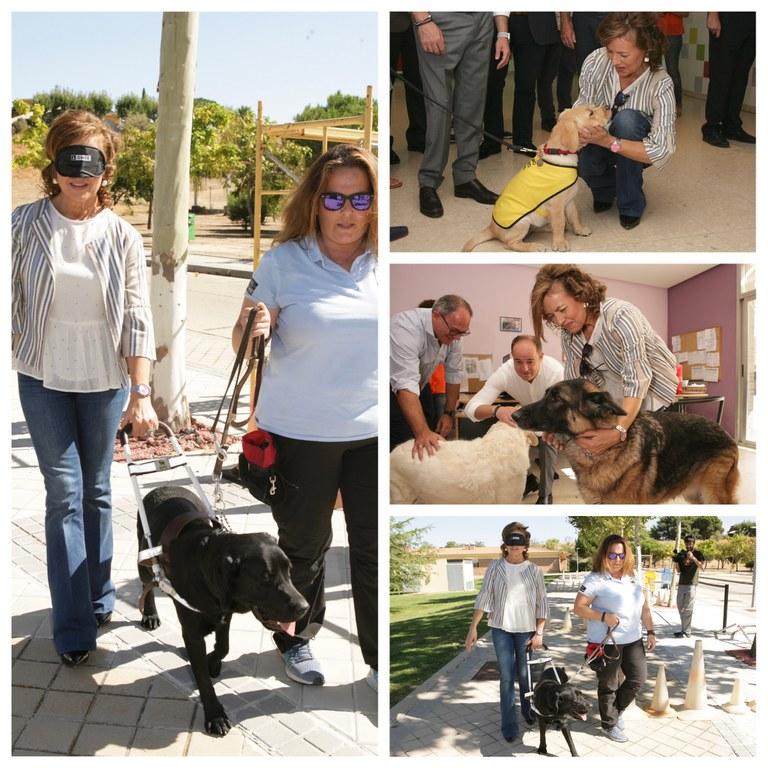Collage visita consejera de Castilla-La Mancha a la FOPG